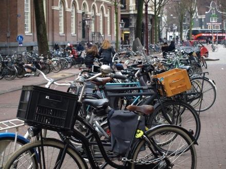 Rowery w Amsterdami